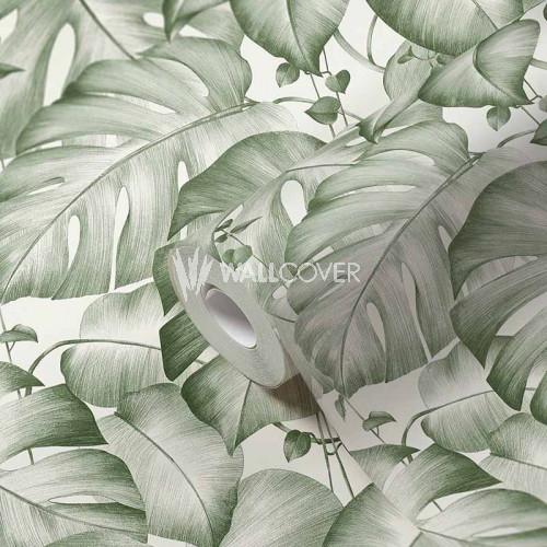 384821 Tapete Dschungel Monstera Blätter Ranken Grün Weiß