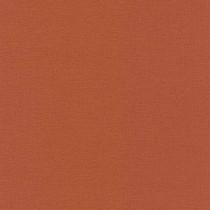 449051 Kalahari Rasch