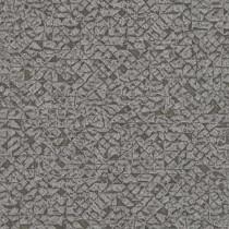 704358 Kalahari Rasch
