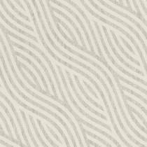 704525 Kalahari Rasch
