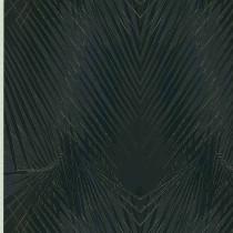 17005 Roberto Cavalli Home Vol. 6 Emiliana Parati