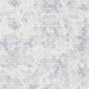 219580 Dimensions by Edward van Vliet