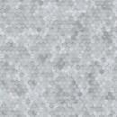 219583 Dimensions by Edward van Vliet