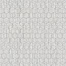 219622 Dimensions by Edward van Vliet