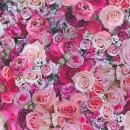 327221 Urban Flowers AS-Creation