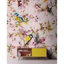 DD110231 Walls by Patel Songbirds