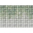 DD122076 Walls by Patel 3 greenhouse 2