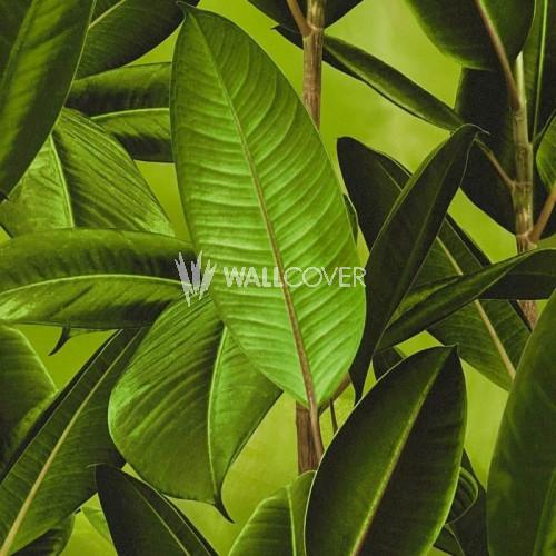 362011 Livingwalls Vliestapete