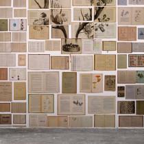 EKA-02 Biblioteca by Ekaterina Panikanova NLXL Vliestapete