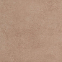 17919 Curious BN Wallcoverings Vliestapete