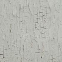 218021 Essentials BN Wallcoverings Vliestapete