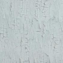 218024 Essentials BN Wallcoverings Vliestapete
