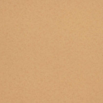 218313 Glassy BN Wallcoverings Vliestapete