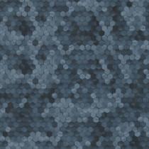 219582 Dimensions by Edward van Vliet