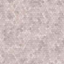 219584 Dimensions by Edward van Vliet