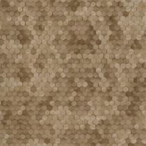 219587 Dimensions by Edward van Vliet