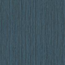 219613 Dimensions by Edward van Vliet