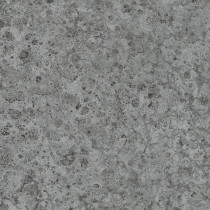 31030 Platinum Marburg Vliestapete