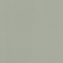 523140 Sparkling Rasch
