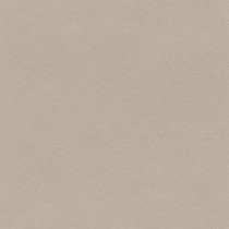 527056 Crispy Paper Rasch Vliestapete