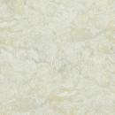17171 Van Gogh BN Wallcoverings