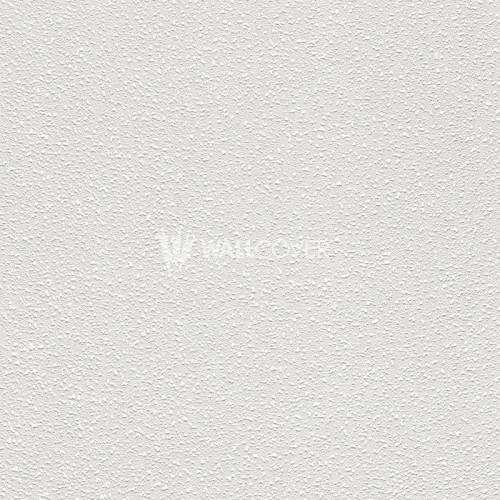177412 Wallton 2017 Rasch