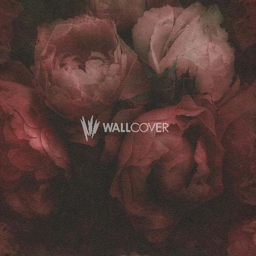373924 New Walls livingwalls