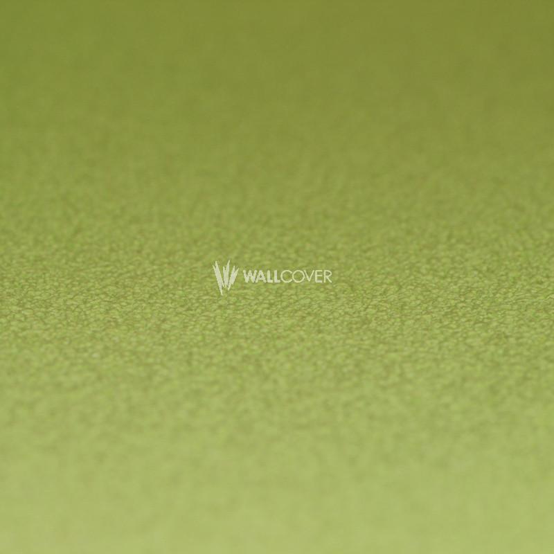 Papier peint 469035 kids club 2014 en ligne for Wallcover papier peint