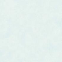 040828 Rosery Rasch-Textil Papiertapete