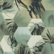 219570 Dimensions by Edward van Vliet