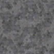 219581 Dimensions by Edward van Vliet