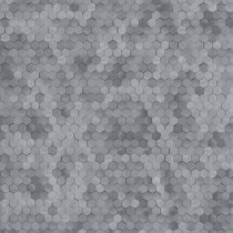 219588 Dimensions by Edward van Vliet