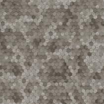 219589 Dimensions by Edward van Vliet