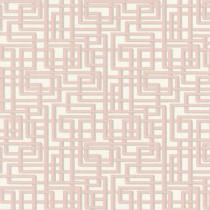 363122 Palila A.S. Création