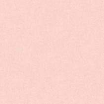 366292 Colibri Livingwalls