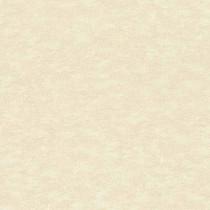 420623 Saphira Rasch