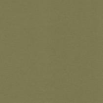 452068 Kalahari Rasch