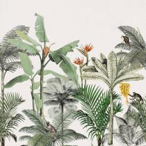 539172 Club Botanique Rasch