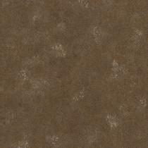 550689 Highlands Rasch