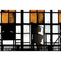 113302 Walls by Patel 2 Bronx
