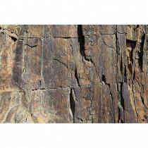 DD115676 XXL Wallpaper 5 livingwalls