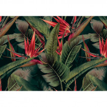 DD120243 Cuba AS-Creation