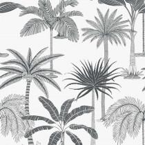 36500 Jungle Jive Hookedonwalls