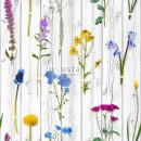 158828 Greenhouse Rasch-Textil