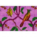 113842 Walls by Patel 2 Bird Of Paradise