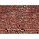 DD118784 Designwalls livingwalls