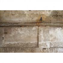 Carta Da Parati Su Muro Ruvido.Acquista Online La Carta Da Parati Effetto Cemento Wallcover It