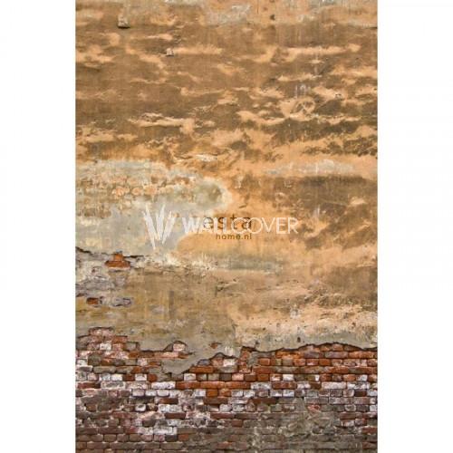 157704 Greenhouse Rasch-Textil