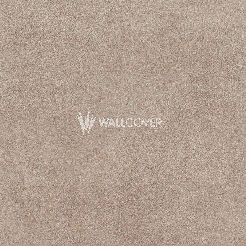 17921 Curious BN Wallcoverings