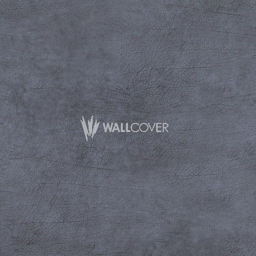 17928 Curious BN Wallcoverings